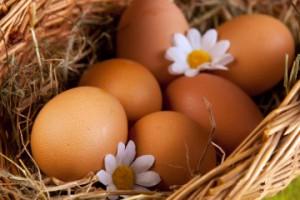 Израиль приостановил импорт яиц из Украины