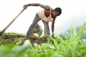 Oxfam: 62 человека владеют половиной мировых богатств