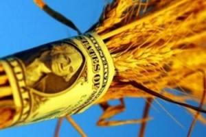 Украина может лишиться $1 млрд из-за зерна и металла
