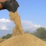 Украинские аграрии не получили свободную торговлю с ЕС