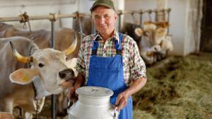 Для украинских аграриев пролоббируют увеличение квот в ЕС