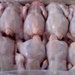 Экспорт курятины вырос почти на 30%