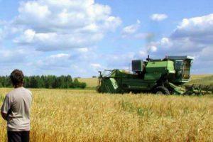 Аграрии Украины дождались инвестиций из Южной Кореи
