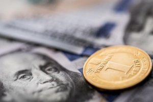 Эксперт: Украина не выживет без помощи МВФ
