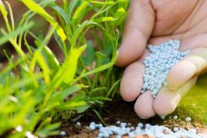 Украина будет избавляться от зависимости от российских удобрений