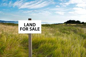 Депутаты планируют снять мораторий на продажу земли