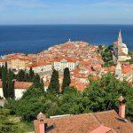 ВНЖ в Словении через бизнес