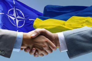 НАТО намерено теснее сотрудничать с Украиной в вопросах кибербезопасности