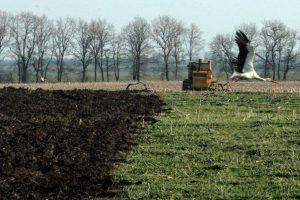 Дотирование аграриев: в поиске приоритета