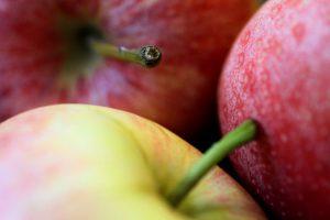 Украина увеличила экспорт яблок в Европу в 9 раз