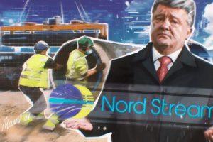 Эксперт прокомментировал возможности Литвы и Украины сорвать создание «Северного потока-2»