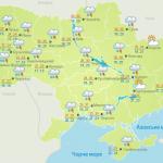 Сумки с миллионами изрезанных гривен нашли в лесу на Украине