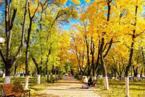 Украинцев ожидает теплый ноябрь