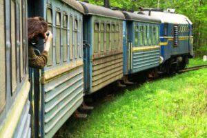 Украинский узкоколейку покажут в документальном кино