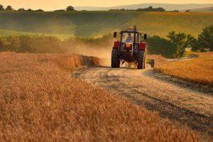Чем Украине угрожает мораторий на продажу земли