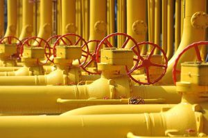 В ГД оценили слова депутата Рады о прекращении контракта по газу