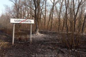 Россия рассказала о готовности помочь Украине в Чернобыле