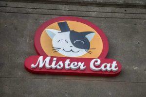 Доступный популярный сервис «Mister Cat»