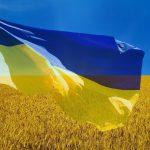 Как «исторические» фильмы Украины пропагандируют ненависть к русским. Колонка Владимира Тулина