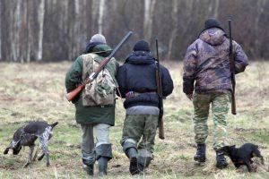 Украинских пограничников накажут за поруганную косулю