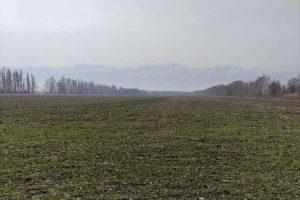 Украина будет продавать свою землю иностранцам